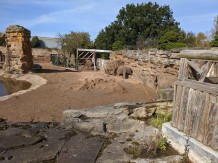 The Elephant Enclosure